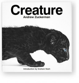 Andrew-Zuckerman.1